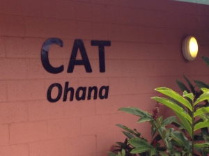 """Cat Family"" building at Maui's Humane Society"